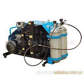 供应MCH13-16/ET便携式呼吸空气填充泵
