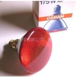 供应SICCA PAR38 Red 175W 欧司朗红外线灯泡(动物养殖灯泡)