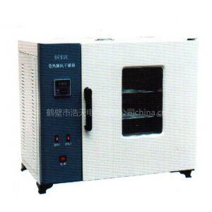供应厂家批发101系列干燥箱电炉丝干燥箱202干燥箱鼓风干燥箱