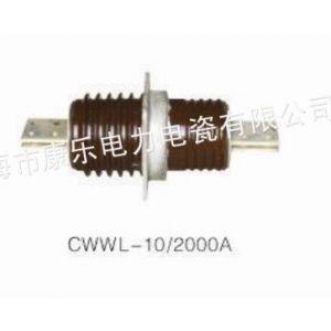 供应【轩泰】CWW-10/4000A CWWL-12穿墙套管