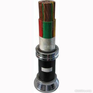 供应氟塑料绝缘阻燃聚氯乙烯护套电力电缆
