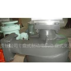湖南跃进机电有限责任公司供应电力机车泵