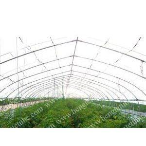 供应供应温室大棚管 镀锌管