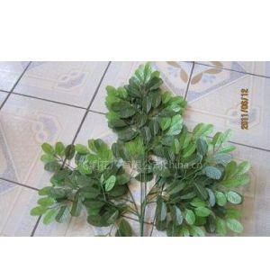 供应仿真槐树叶,仿真枝条,仿真树枝,仿真树叶,仿真植物,仿真花,绢花
