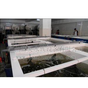 供应海水工厂化养殖循环水养殖工程
