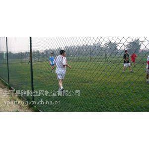 供应供应深圳场地围栏网,篮球场体育围栏网报价,球场围栏网厂家
