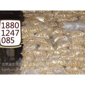 供应农科院培育的一级脱毒高产进口玉米种子 粘玉米种子价格 水果玉米种