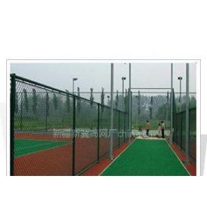 供应新疆筛网球场围栏网 体育场围栏