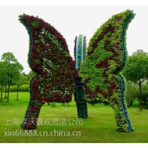 供应上海植物造型公司、上海景观造型设计、上海植物小品造型工程