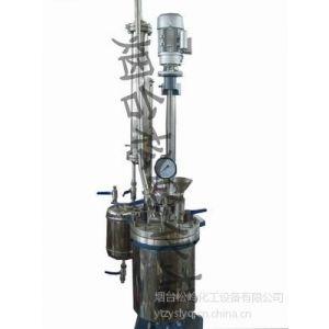 供应带冷凝器的高压反应釜、带蒸发器的高压反应釜
