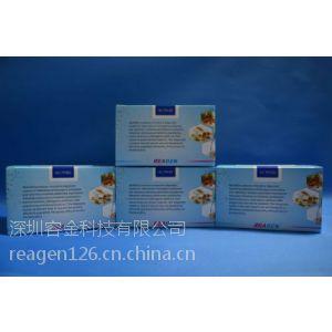 供应猪布鲁氏菌抗体检测试剂盒