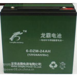 供应厂家批量现货供应龙霸电动车电池48V电瓶