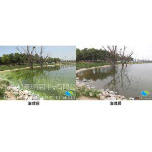 供应蓝藻治理邦源环保