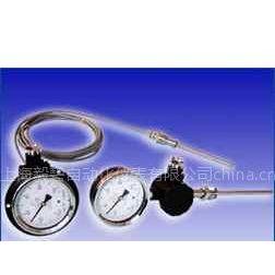 供应WTY系列液体压力式温度计