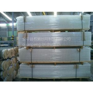 供应电焊网片 镀锌电焊网片 建筑网片--江西南昌
