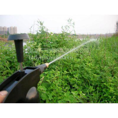 供应小型压力喷壶 家庭园艺气压式喷雾器喷水壶 洒水壶浇花喷雾器0.8L