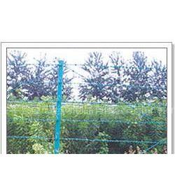 供应镀锌刺绳、PVC刺绳 刀片刺网 高档会所刺网