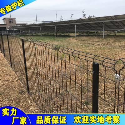 供应五指山花池护栏网,海口林区护栏网,河源绿化带厂家直销