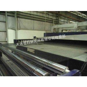 供应塑料双向拉伸土工格栅生产线