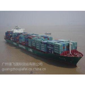 供应广州到圣佩德罗阿根廷南美洲国际海运专线