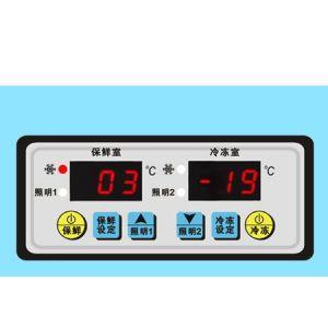 供应双显示温度控制器 SF-252