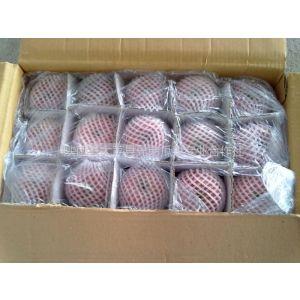 供应陕西冷库红富士苹果75起步1.35元/斤左右,地窖70起步0.80元/斤
