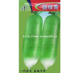 供应脆绿青水果型萝卜种子