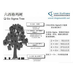供应深圳代表的张驰六西格玛黑带培训