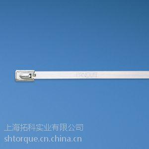 供应PANDUIT(泛达)不锈钢金属扎带线束MLT4S-CP