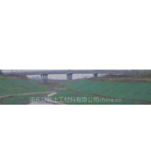 供应重庆生产厂家三维植被网绿化边坡种植网养护花草播种