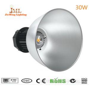 供应厂价直销 大功率led灯 led照明厂家 仓库led射灯 工矿灯30W