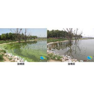 供应蓝藻治理邦源环保值得信赖