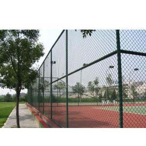 供应大连体育场护栏网、开发区网球场围栏网,品质保证,价格低廉