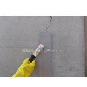 供应工程师A6微细裂缝封闭膏,裂缝处理,楼板裂缝修补,桥面铺装裂缝
