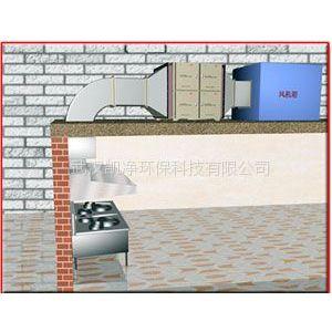 供应武汉静电式厨房油烟净化器设备