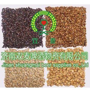 供应焦香麦芽,黑麦芽,小麦芽,澳麦芽,啤酒原料