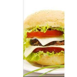 供应快餐加盟  西式快餐店连锁项目  餐饮加盟