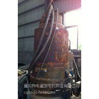 供应重庆修理污水泵潜水泵离心泵