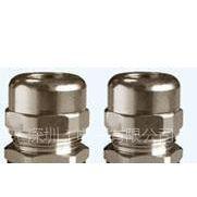 供应金属电缆防水接头,铜制电缆固定头,葛兰头,防水堵头