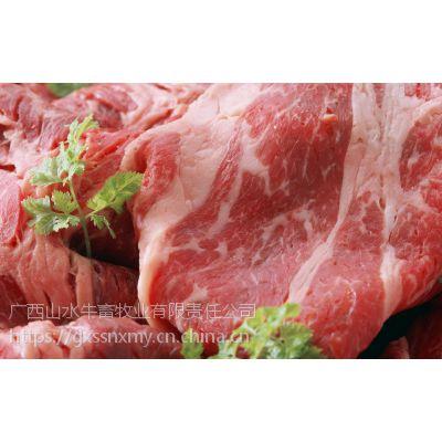 鲜嫩雪花牛肉高品质中国生鲜牛肉牛杂广西山水牛企业养殖基地专业供给各大市场牛犊