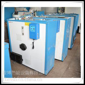供应从化免检50kg燃生物质蒸汽锅炉