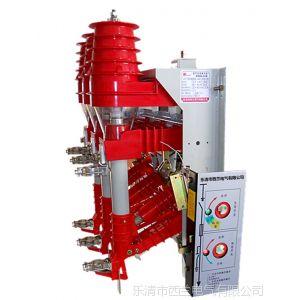 供应FN12-12RD/100-31.5户内高压负荷开关