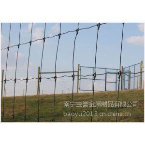 供应热镀锌草原网,牛栏网现货报价