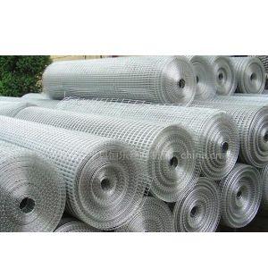 供应生产热镀锌电焊网