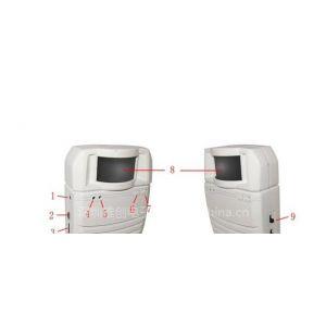供应红外探头(双向)人体感应器