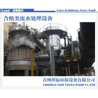 供应谭福环保 FC-L型高效经济酚类污水处理设备 芬顿高级催化氧化塔