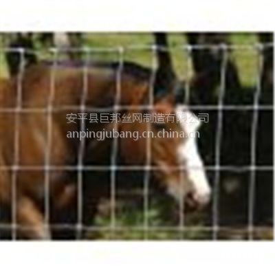供应优质草原网 牛篮网 动物养殖圈养专用围栏网 铁丝网 规格型号齐全