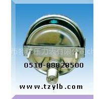 供应卡箍安装耐震压力表|参数|量程范围|接头螺纹