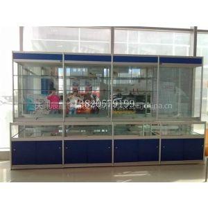 供应汽车4s店展柜 商业专用设备 展示柜 天津4s店货架