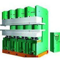 供应供应硫化机 抽真空硫化机 橡胶成型机